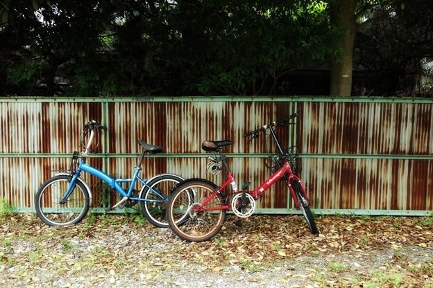 写真: 赤と青
