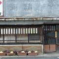 Photos: きつね