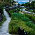 Photos: 石清水八幡宮_038