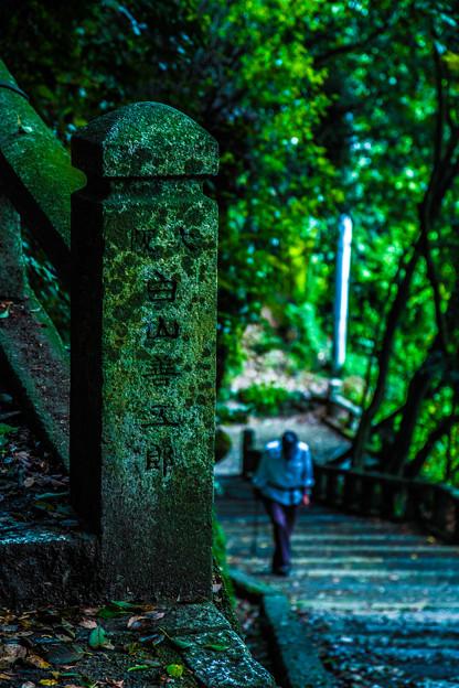 Photos: 石清水八幡宮_057
