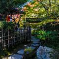 Photos: 南禅寺天授庵_059