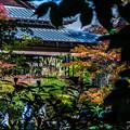 Photos: 南禅寺天授庵_089