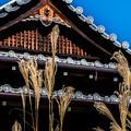 Photos: 南禅寺天授庵_137
