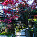 Photos: 南禅寺天授庵_153