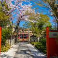 Photos: 2018 03 車折神社_009