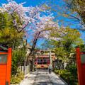 Photos: 2018 03 車折神社_011