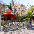 Photos: 2018 03 車折神社_017