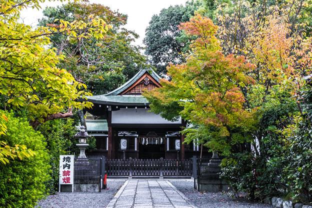 Photos: 赤の宮_005