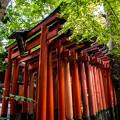 Photos: 赤の宮_023