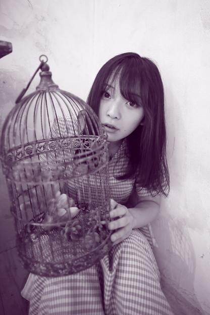 Photos: 2008 星川ひまりsan 176
