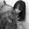 Photos: 2008 星川ひまりsan 175