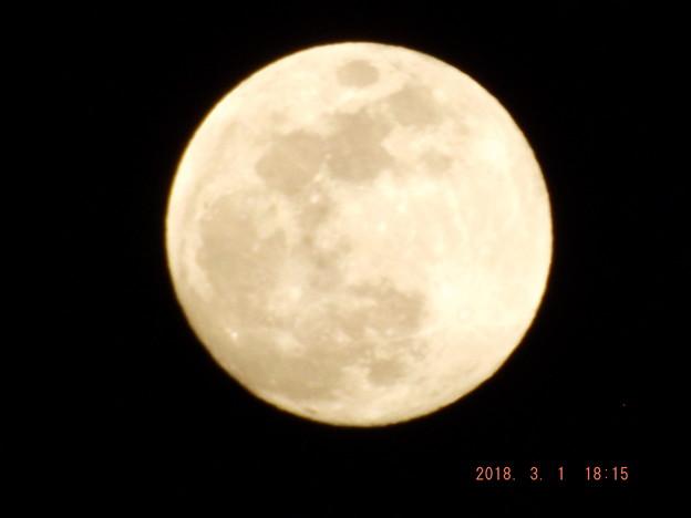 2018/03/01(木)のお月様