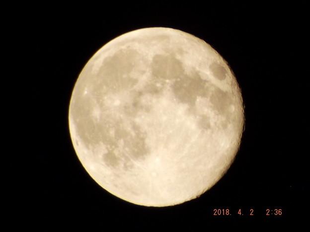2018/04/02(月)のお月様