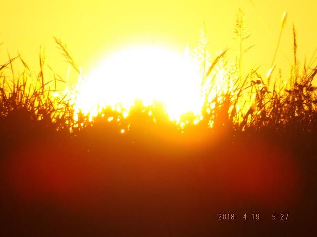 2018/04/19(木)・朝陽