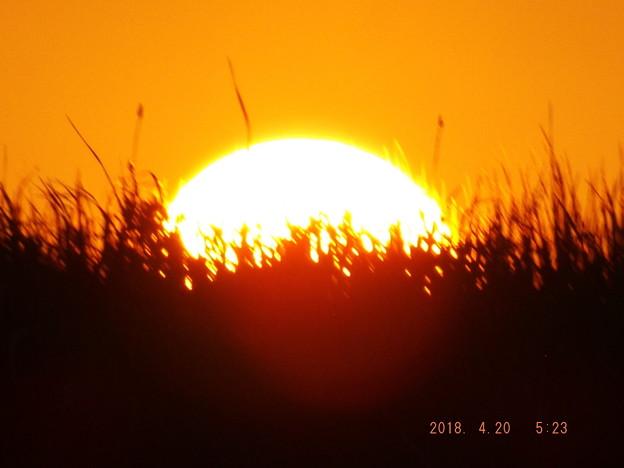 2018/04/20(金)の朝陽