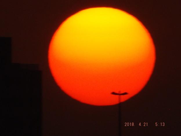 2018/04/21(土)の朝陽・4