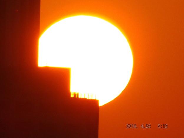 写真: 2018/04/22(日)の朝陽・5