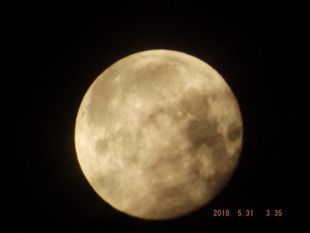 2018/05/31(木)のお月様