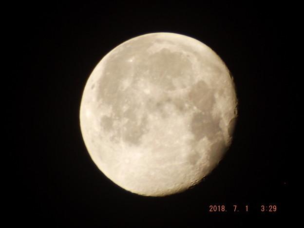 2018/07/01(日)のお月様
