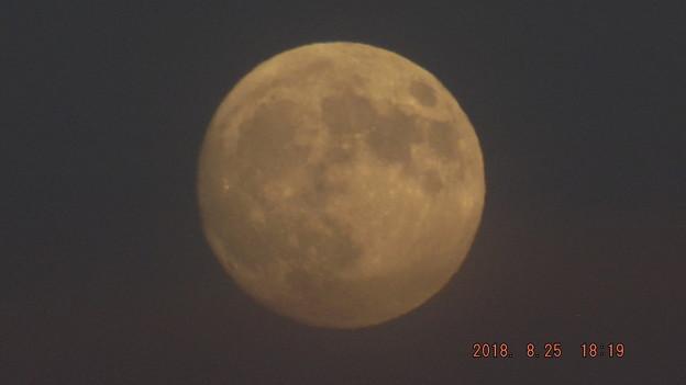 2018/08/25(土)のお月様