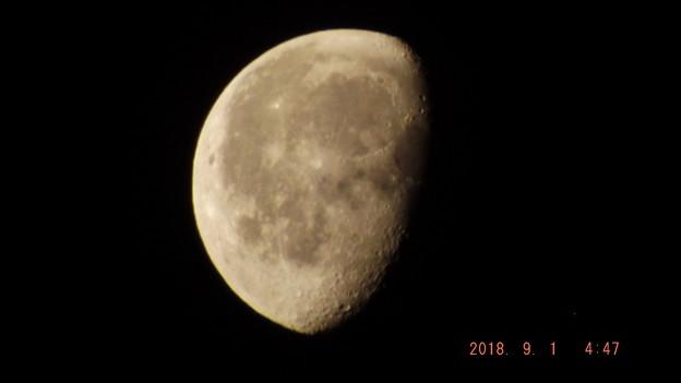 2018/09/01(土)のお月様