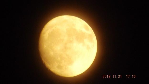 2018/11/21(水)のお月様