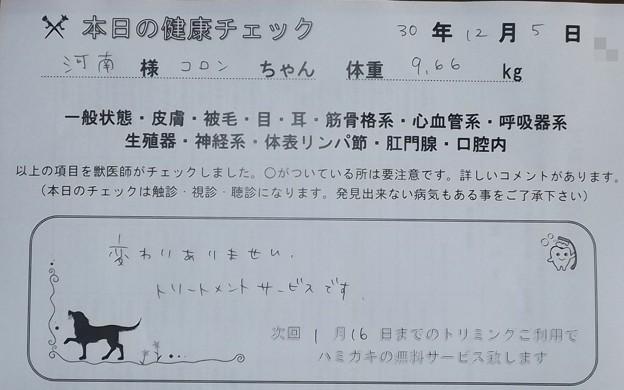 2018/12/05(水)・本日の健康チェック
