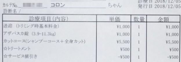 2018/12/05(水)・診療費明細書
