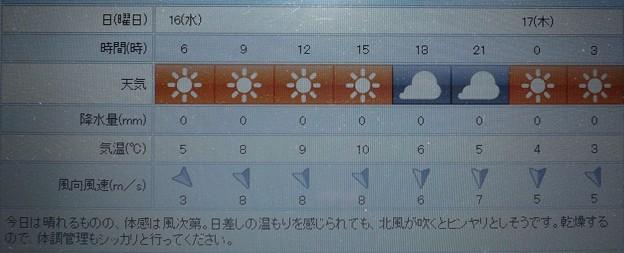 2019/01/16(水)・東京の天気予報