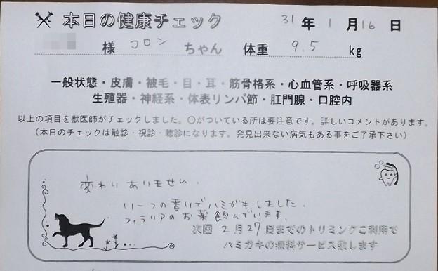 2019/01/16(水)・本日の健康チェック
