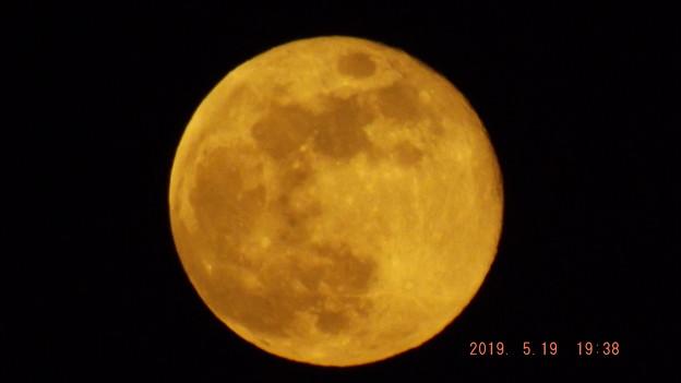2019/05/19(日)のお月様(満月・十五夜)