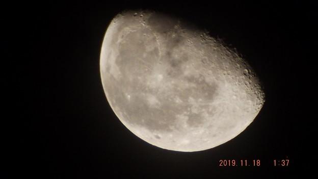 2019/11/18(月)のお月様