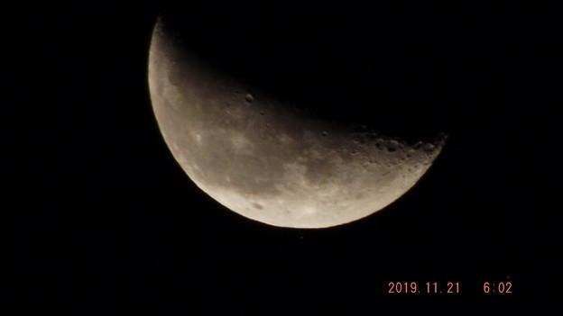 2019/11/21(木)のお月様