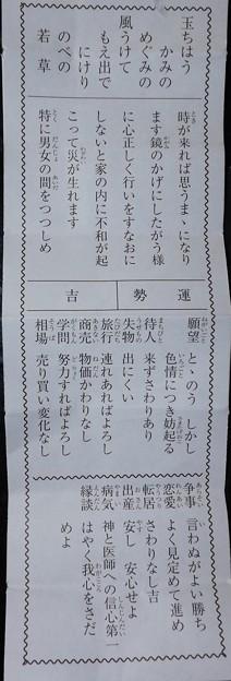 2020/01/02(木)・大和田新田下区八幡神社