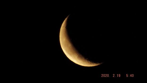 2020/02/19(水)のお月様