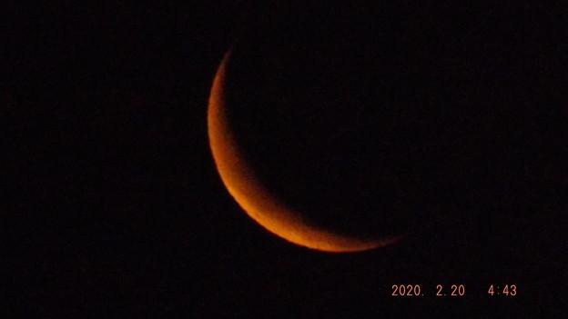 2020/02/20(木)のお月様