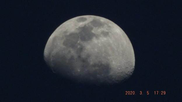 2020/03/05(木)のお月様