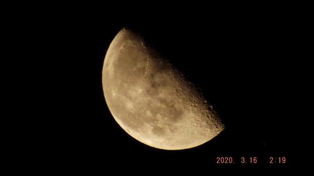 2020/03/16(月)のお月様