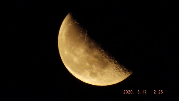 2020/03/17(火)のお月様