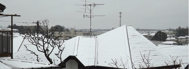 2020/03/29(日)・2階のベランダから見た雪景色