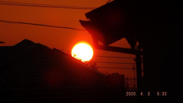2020/04/03(金)・八千代市の日の出
