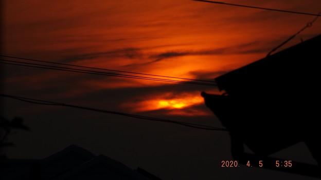 2020/04/05(日)・朝焼け(日の出前)