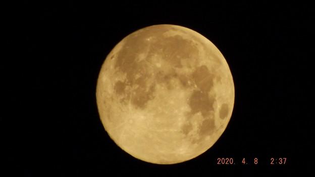 2020/04/08(水)・満月(スーパームーン)