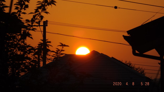 2020/04/08(水)・日の出・5