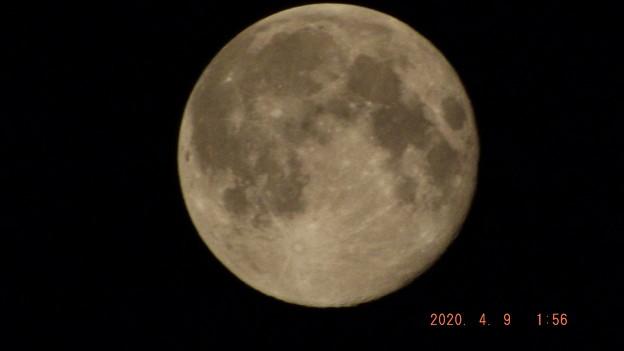 2020/04/09(木)のお月様