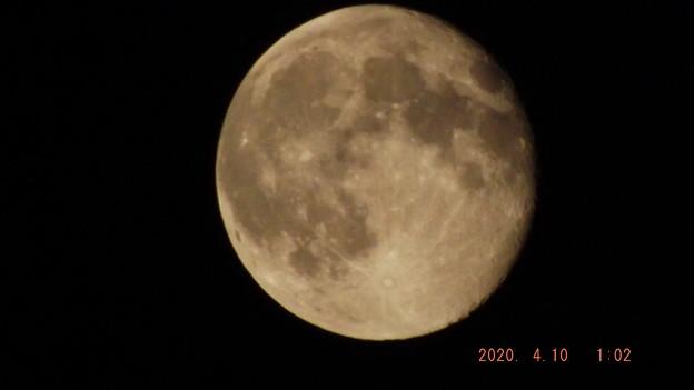 2020/04/10(金)のお月様