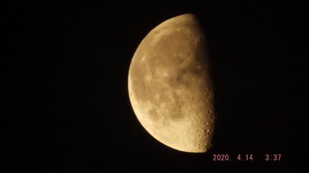 2020/04/14(火)のお月様