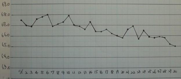 2020/11/30(月)・11月の体重記録