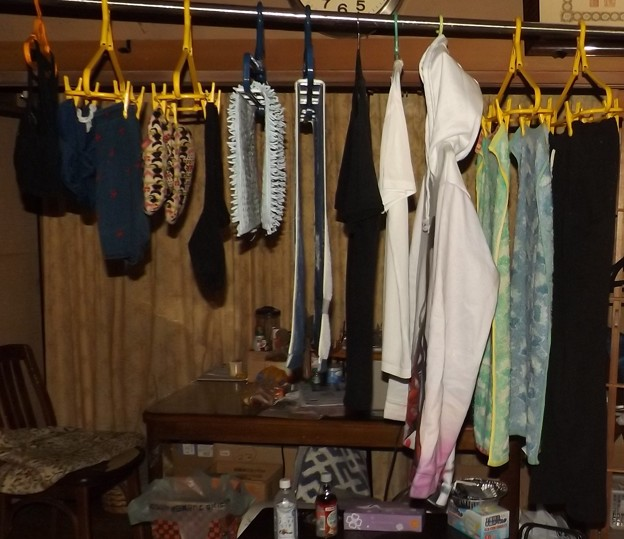 Photos: 2021/01/26(火)・腰痛で部屋干しに