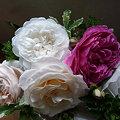 Photos: 090504 花かご